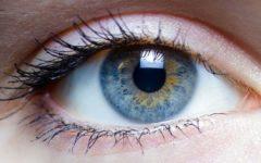 Китайские ученые научились выращивать глазной хрусталик