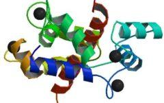 Мутации в гене RYR1 обнаруживают при злокачественной гипертермии